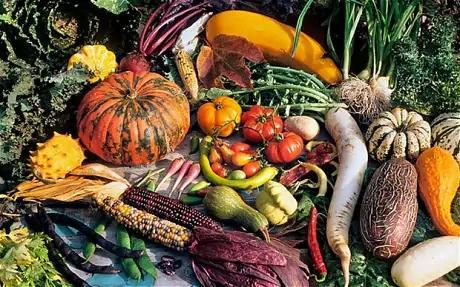 harvest_2547614c